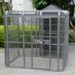 Parrot Aviary & House