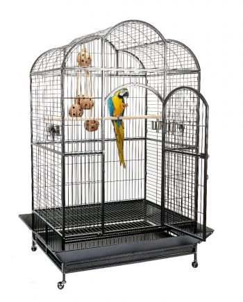 Atlantis Large Bird parrot Cage