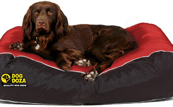 Dog Doza - Waterproof Box Border Beds