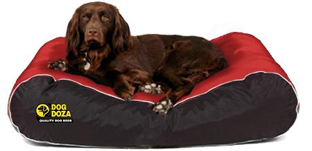 Dog Doza - Waterproof Box Border Beds