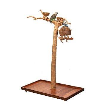 Java II Tree Small Stand Play